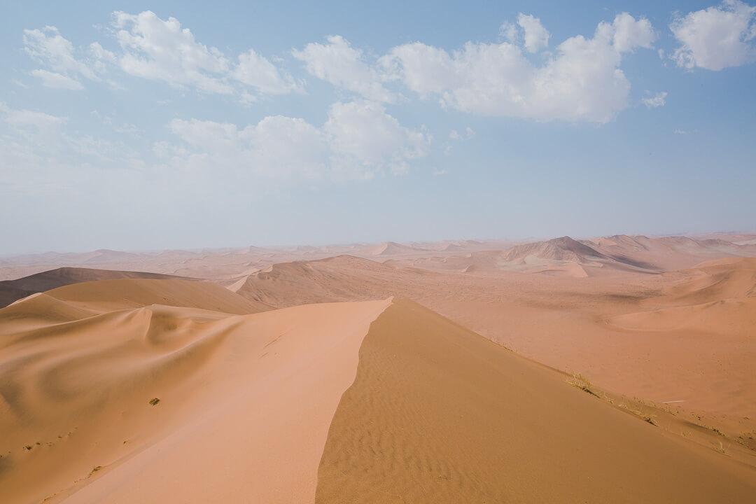 Aussicht über die Dünen von Sossusvlei