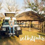 Beitragsbild Selbstfahrer in Namibia